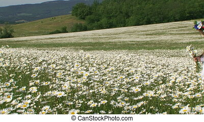 In a field among daisies