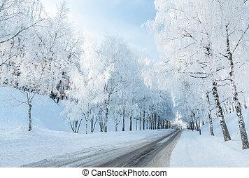 Winter road running along the snow-covered trees Russia,...