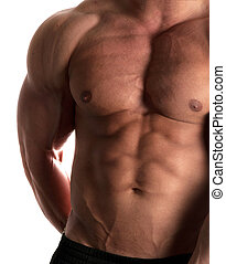 bodybuilder - Muscular male torso of bodybuilder on white...