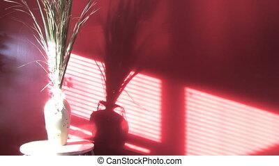 Shadows on Wall 2