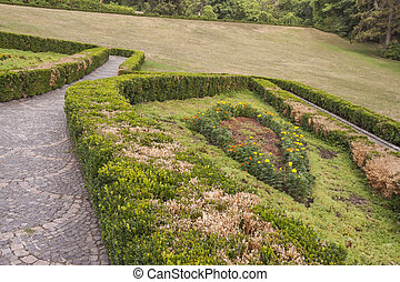 Pattern hedge in Sofiyivsky park - Uman, Ukraine, Europe. -...