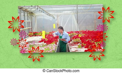 Montage of florists at work on green background