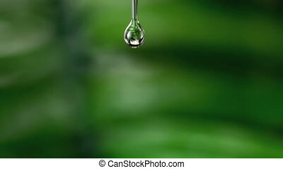 Drop of water falling against green