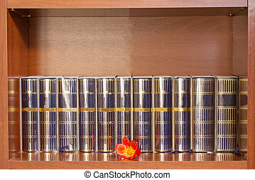 Books - Blue and gold books in a wooden bookshelf