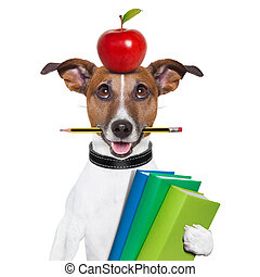 school dog - dog going to school with books pencil and apple