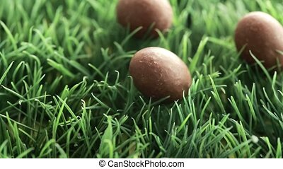 Three chocolate easter eggs in the grass