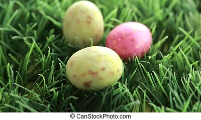 Easter eggs dropping in the grass - Yellow red and green...