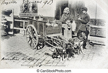 old postcard of Belgium, dairy Flemish, the infringment...