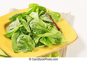 Swiss chard leaves - Young Swiss chard leaves on square...