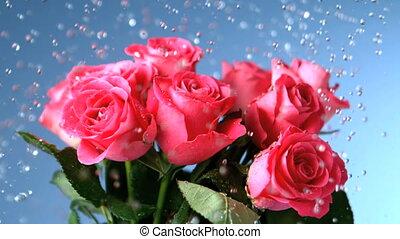 Blomstrar, existens, Tåra