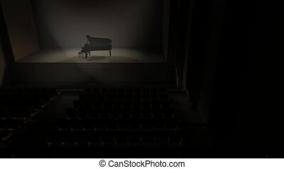 Piano stage - Artist concept piano stage and audience hall.