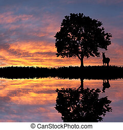 Landscape with silhouette of tree and horse - Evening...