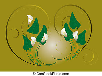 Flowers white callas on a green bac