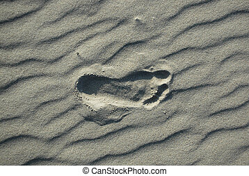Foot print on sandy beach