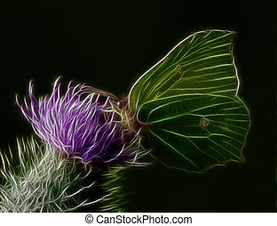 Brimstone Butterfly  (Abstract) - Butterfly on a flower