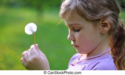 Little girl blows on white dandelion playing on green lawn
