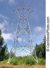 Electricity Pylon - A high voltage line through the forest