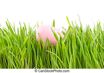 egg easter in a grass Isolated on white