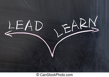 Lead or learn - Choosing from lead or learn conceptional...