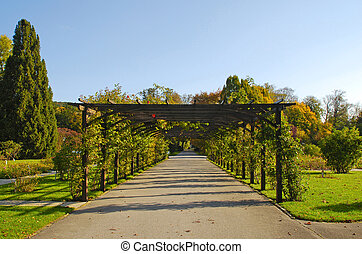 Garden footpath and pergola with flowers in autumn park