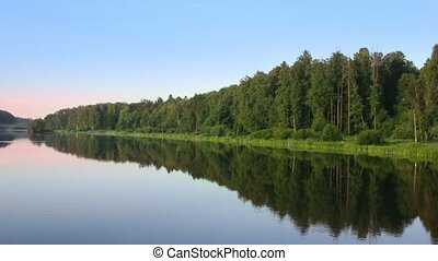 Forest is situated on river bank on which grow green grass