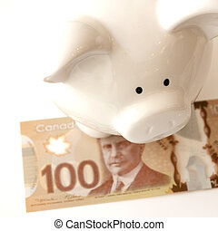 Piggy Bank With Canadian Money - White piggy bank with a one...