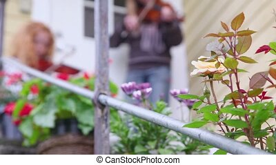 rose bush in front of country house, girls play on violin