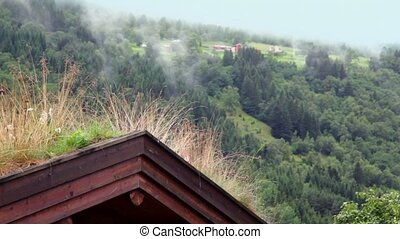 Wooden roof of Norwegian house on hill, forest at valley...