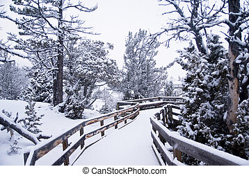 Morning Snow on Wooden Boardwalk 3 - A light snowfall covers...