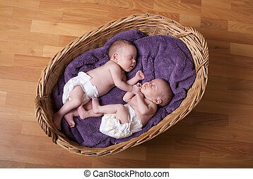 Newborn twins - Little newborn twins are sleeping