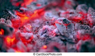 Flicker of smoldering embers lay in ashes, closeup view with...