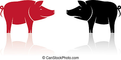 Vector image of an pig on white background