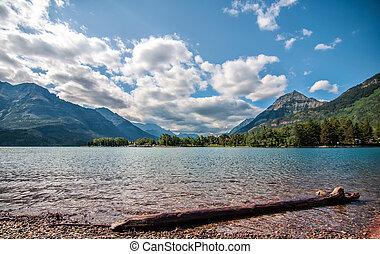 Log on Waterton Lake With Mountains
