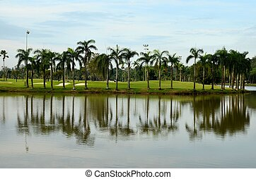 Lake, sand traps, palm trees and golf - A scenic view of a...