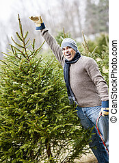 Man with Christmas tree on a farm - Man at cut your own...