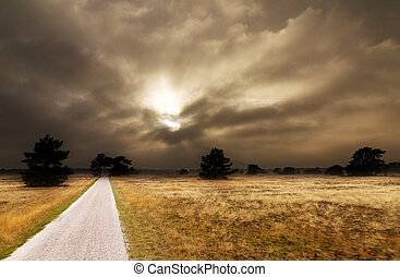 Dark Veluwe - Dark skies over National park 'De hoge Veluwe'...