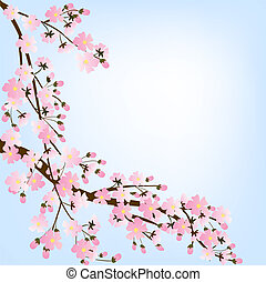 Spring background with blooming tree brunch