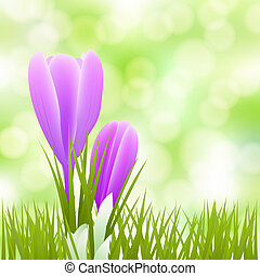 spring little flowers background