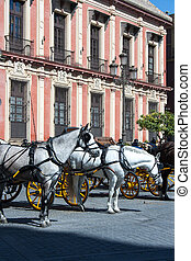 Seville horse and Buggy