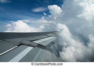 Aircraft wing - Wing an aircraft.