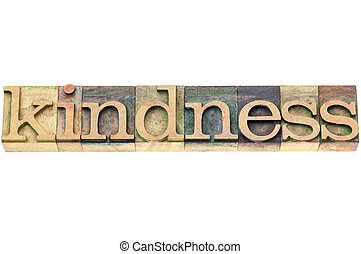 kindness word in wood type - kindness - isolated word in...