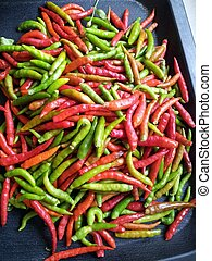 bird's eye chili - The fruit of the bird's eye chili is...