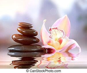 Spa Zen Stones Harmony Concept