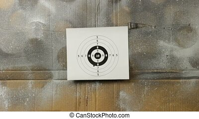 rifle range - shooting at bull's eye