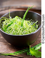 Microgreens Healthy Green Salad Little Sprouts Diet