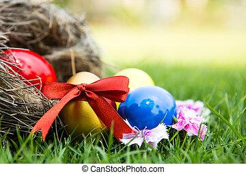 Easter eggs in nest on green grass