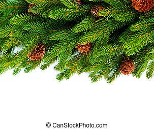 Christmas Tree Border Design Over White