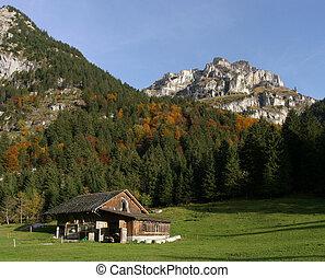 Farm Field in The Alps