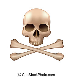 Skull and crossbones - Realistic vector skull and bones