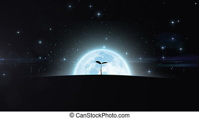 Tree growing under the moon. HD 1080.